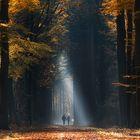 November-Herbst