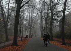 November in der Promenade