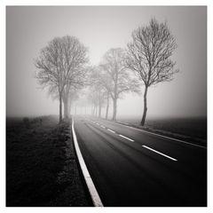 November Road II
