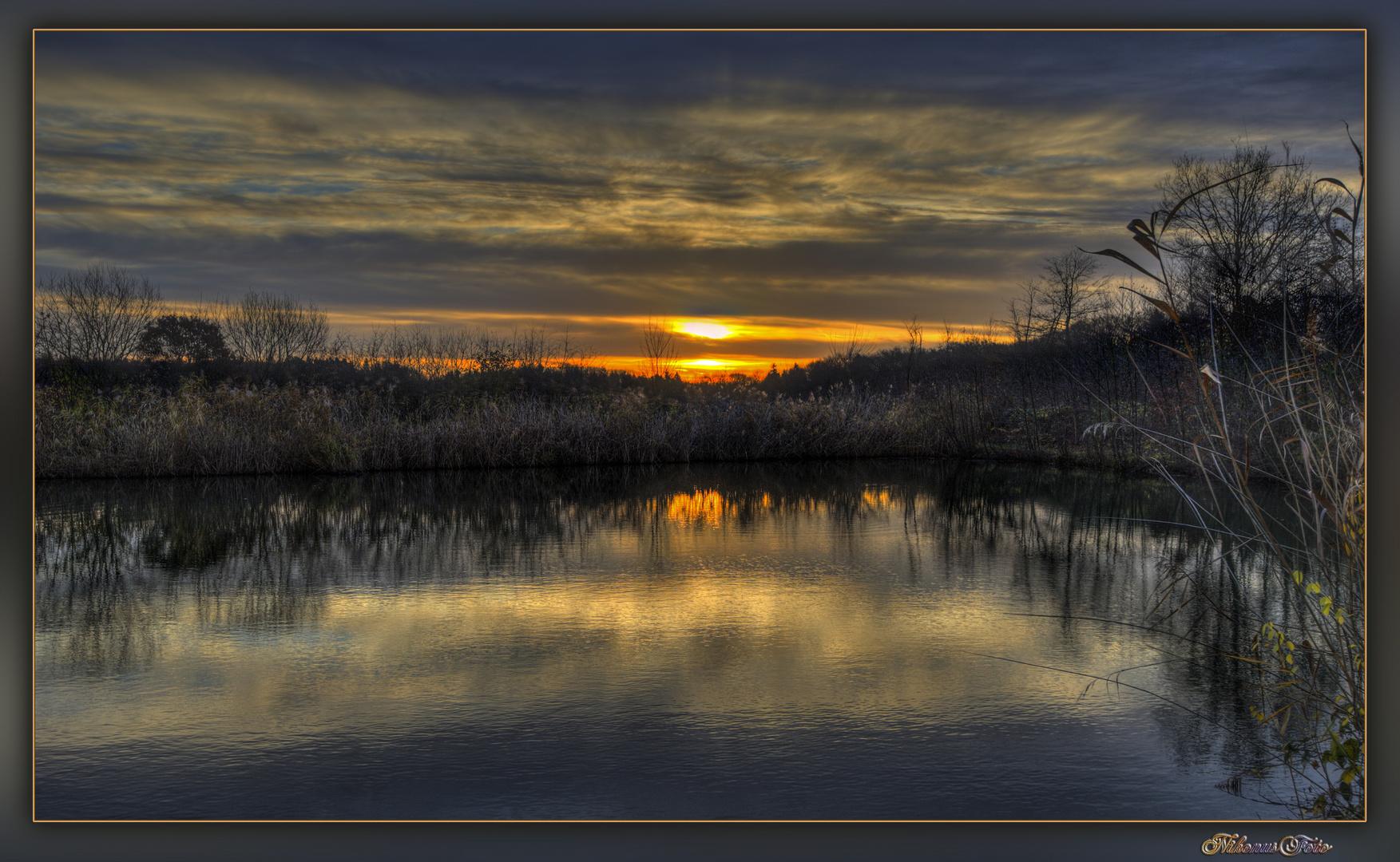 Novemberlicht 2 am Teich