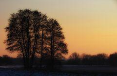 Novemberlicht im Februar