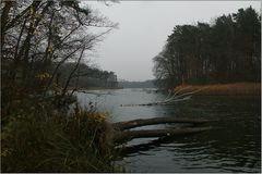 Novembernachmittag am Hellsee