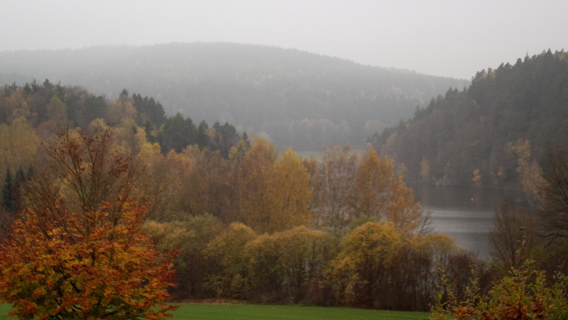 Novembernebel am See