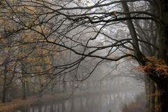 November.Nebel