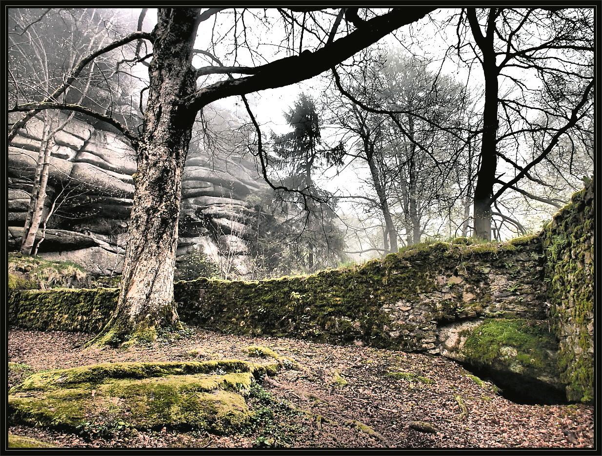 Novemberstimmung im Burggarten