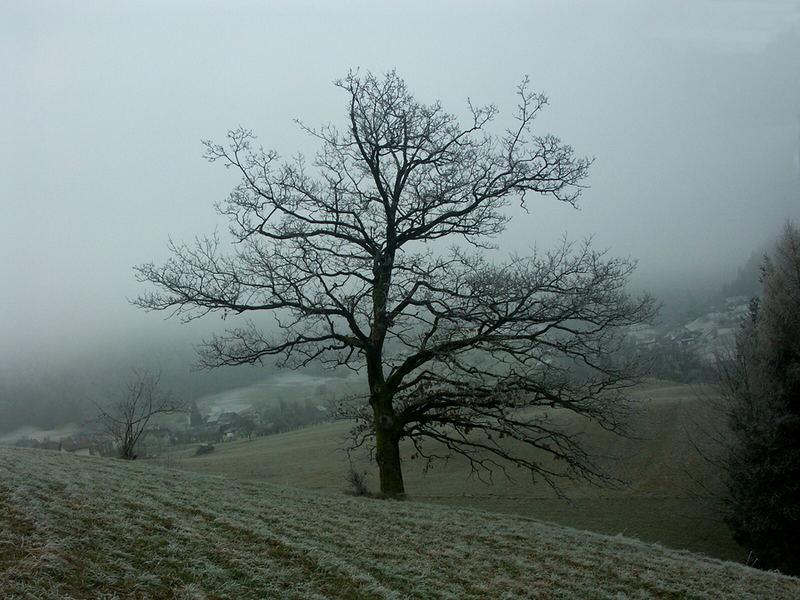 Novembertag in Perneck