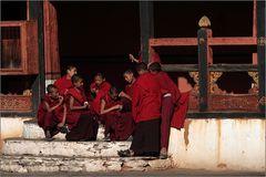 novizen im paro dzong