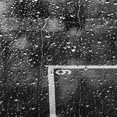 Nr 6 im Regen .