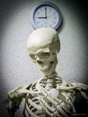 Nu aber husch husch zurück ins Kistchen...oder: Wartezeiten in der Praxis..#1.575##