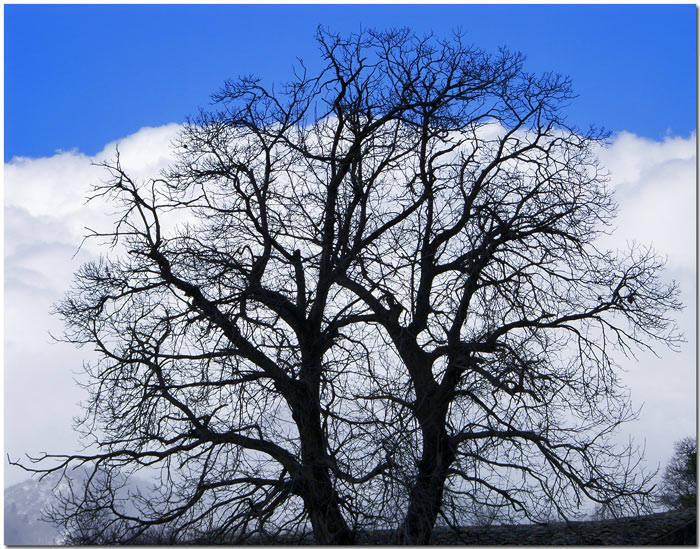 nubi che scacciano il cielo