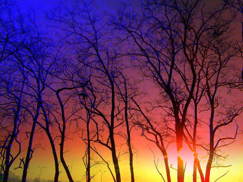 Nudi contro il cielo