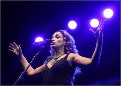 Nuernberg Musikbericht 2015 + NOA Festival Aktuell +72FOTOS