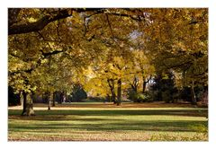 Nürnberger Stadtpark
