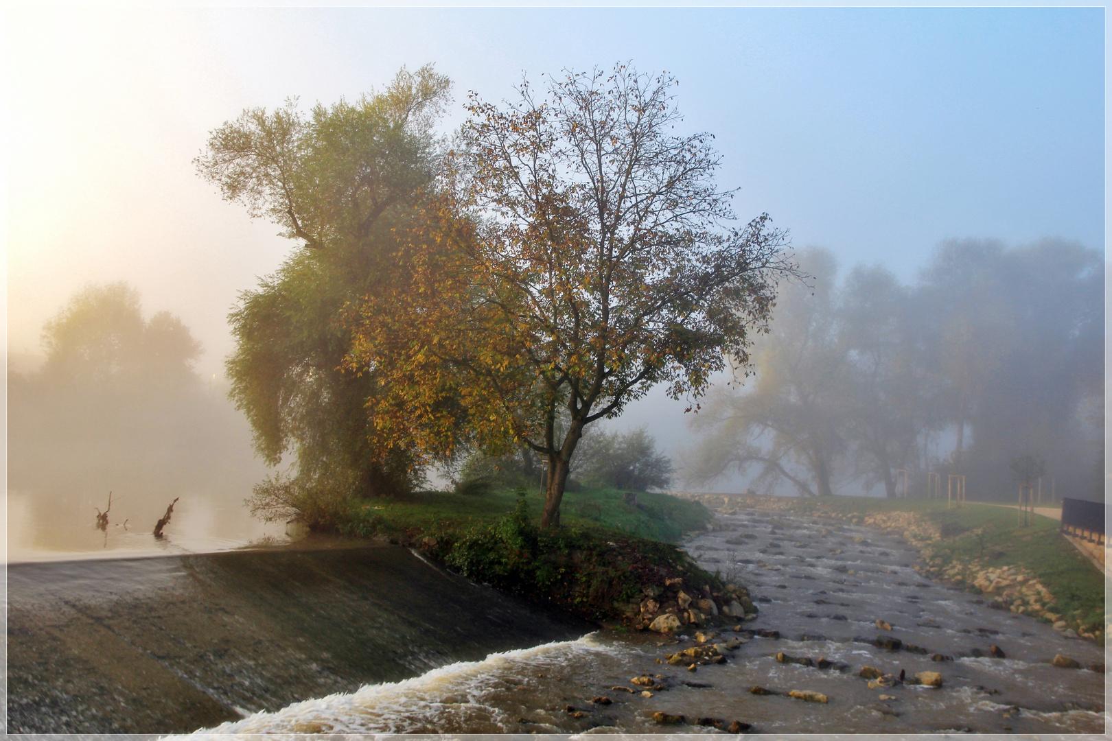 nürtingen im nebel