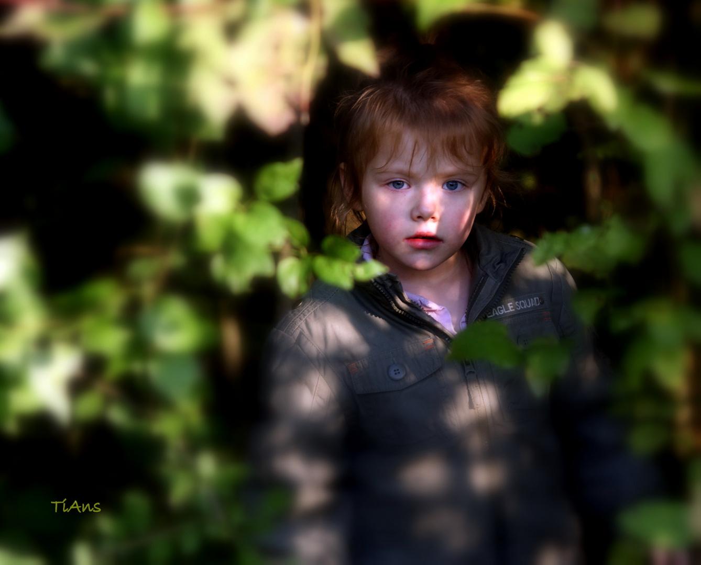 nuestra hada del bosque unsere waldfee