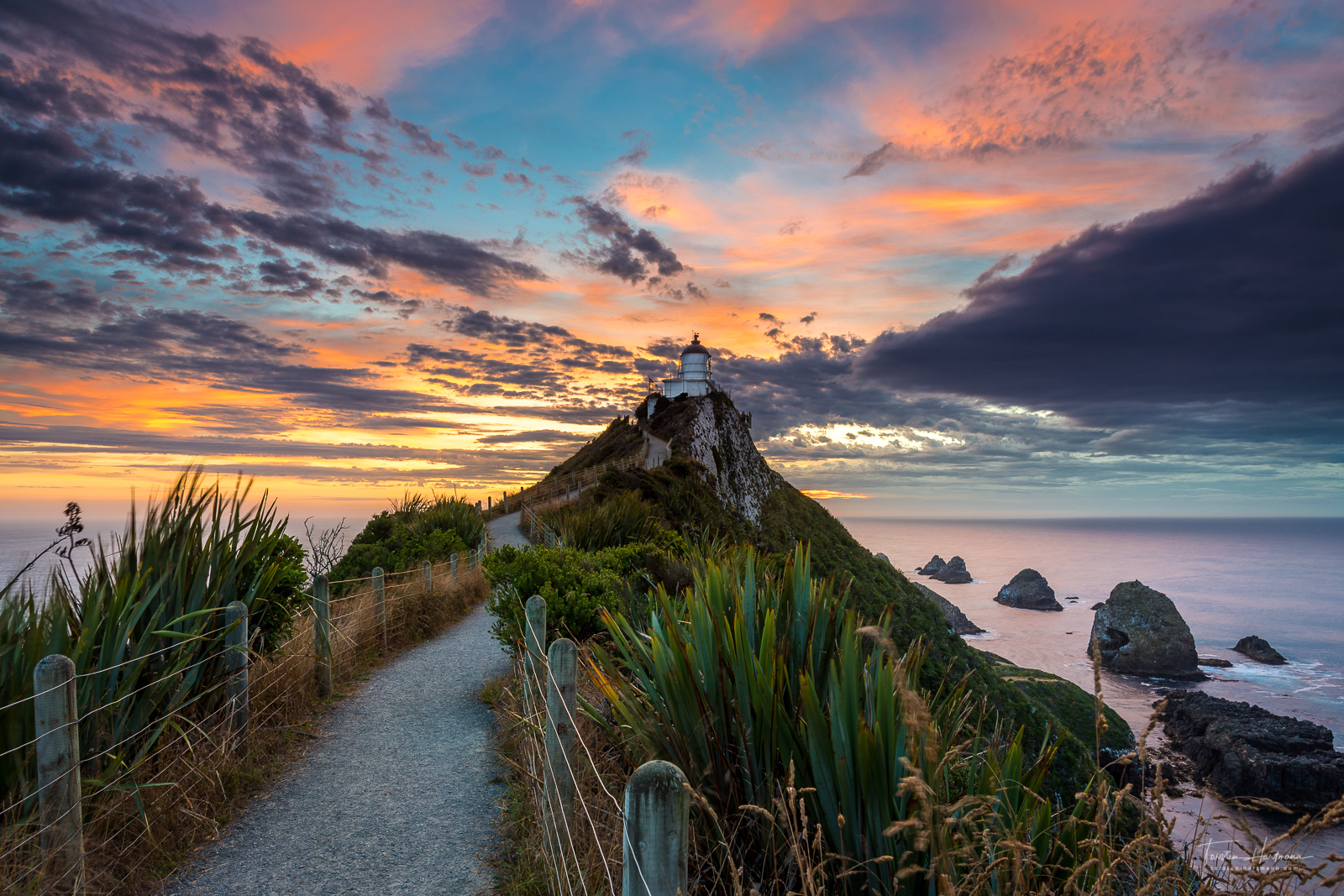Nugget Point (New Zealand)