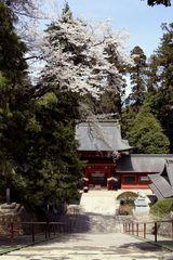 Nukisaki Shrine in Gunma Pref.