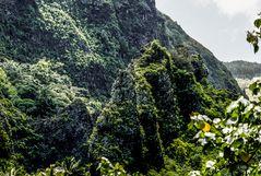 Nuku Hiva Kletterpartie