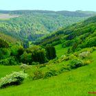 Nun ist alles wieder, im grünen Bereich......