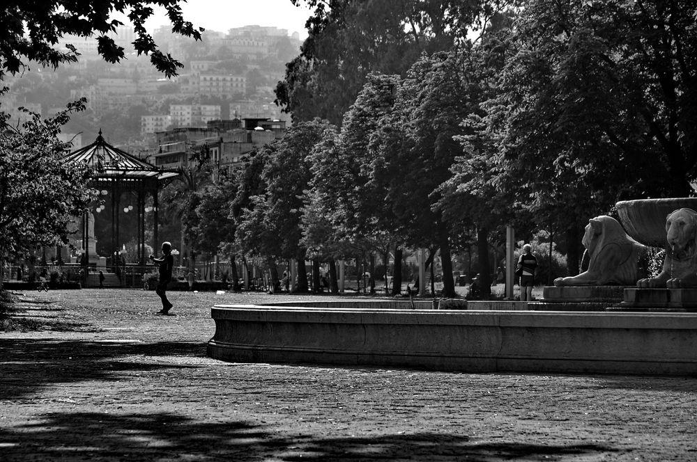 nur ein park