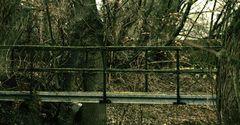 """""""Nur eine kleine Brücke"""""""
