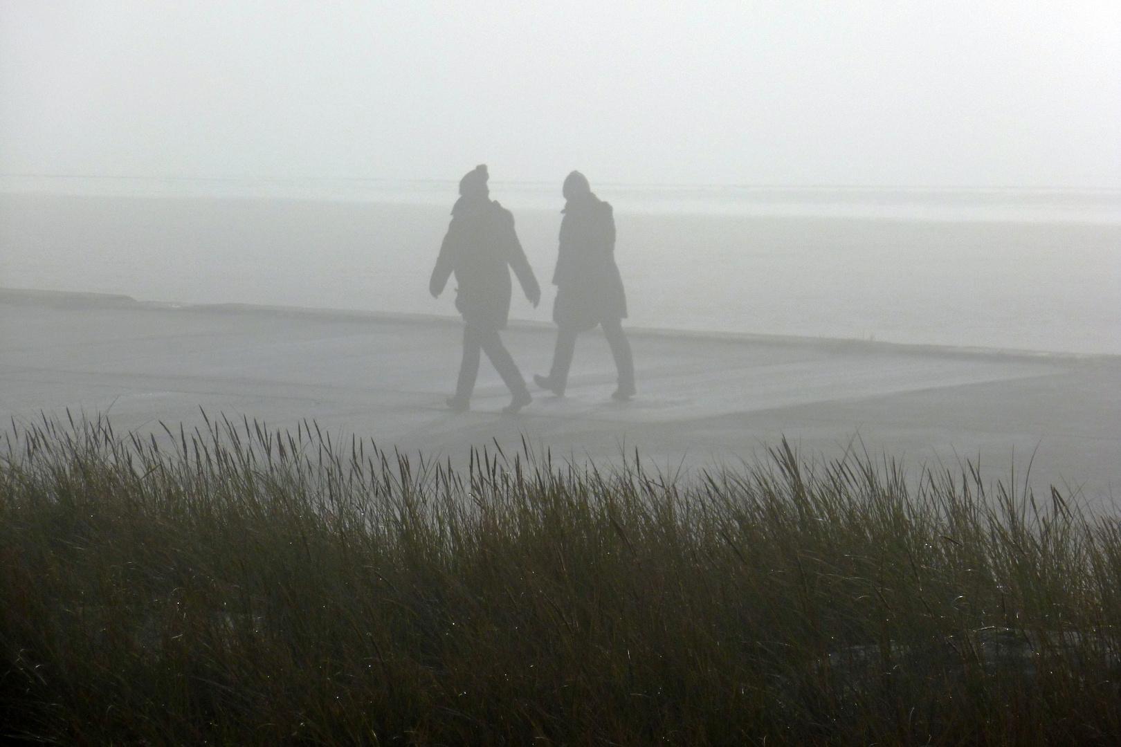 Nur nicht im Nebel verlaufen ...