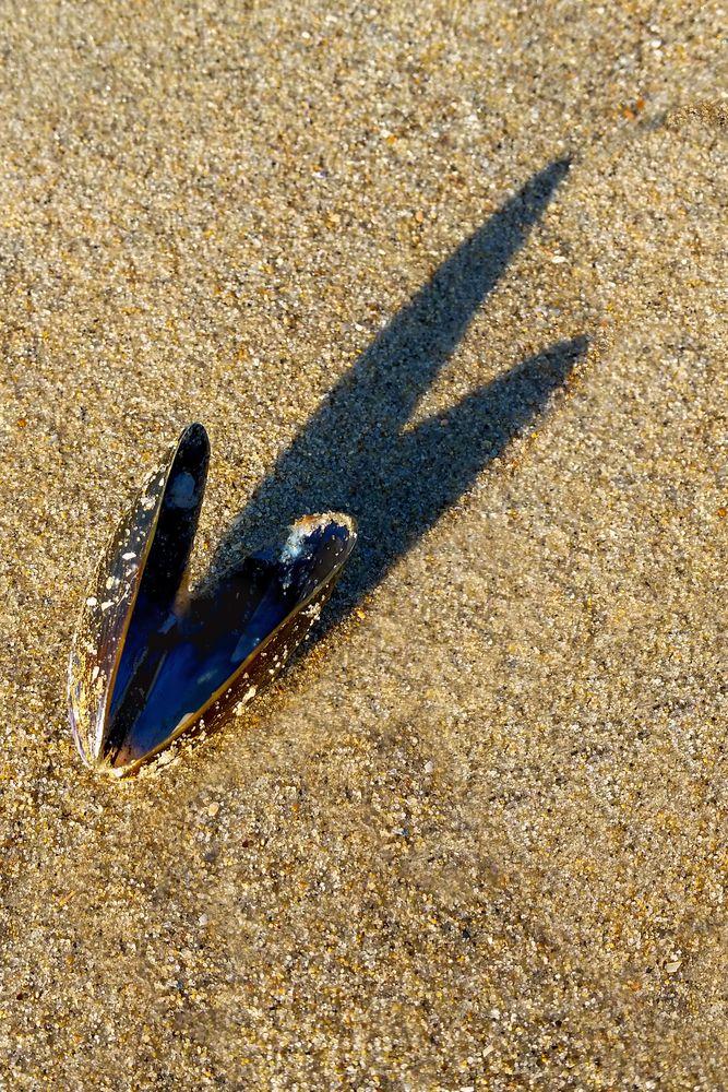 Nur noch ein Schatten