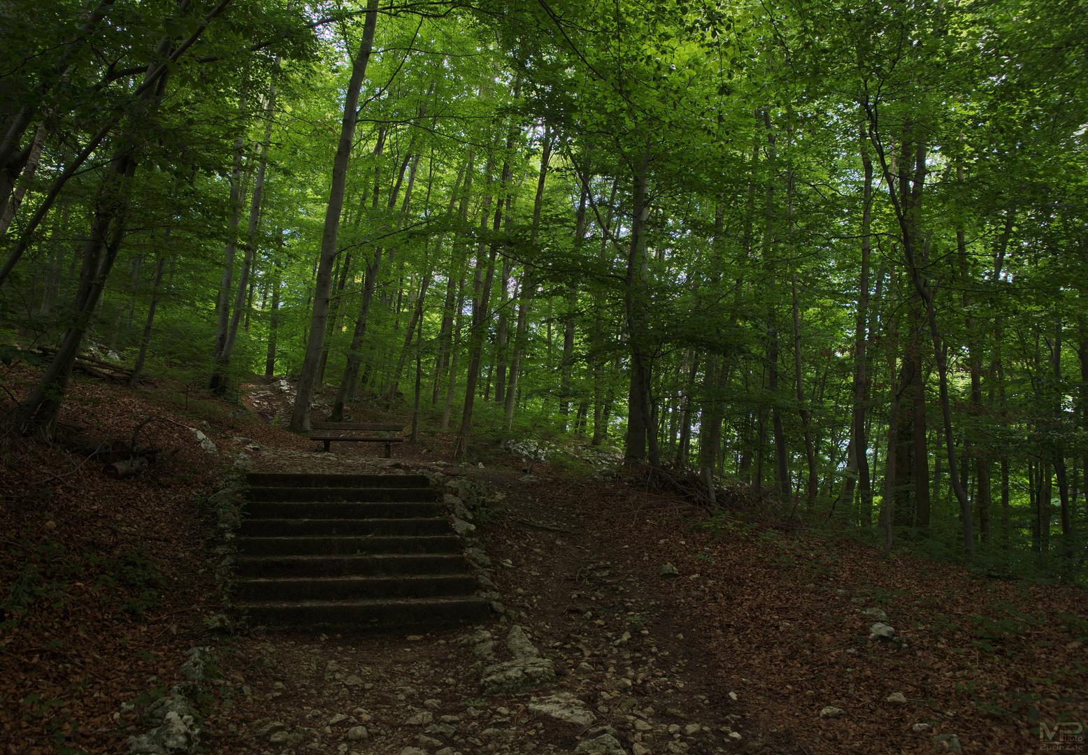 Nur noch eine Treppe ..
