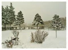 Nur wenige Tage hatten wir Schnee....