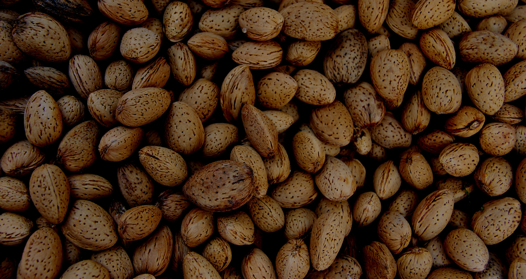 Nuts on a Yalta market in summertime