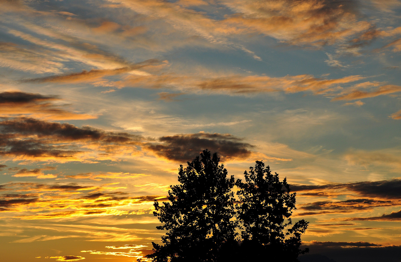 Nuvole dorate