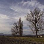 ...nuvole.......