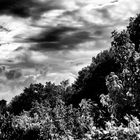 Nuvole sulla rocca