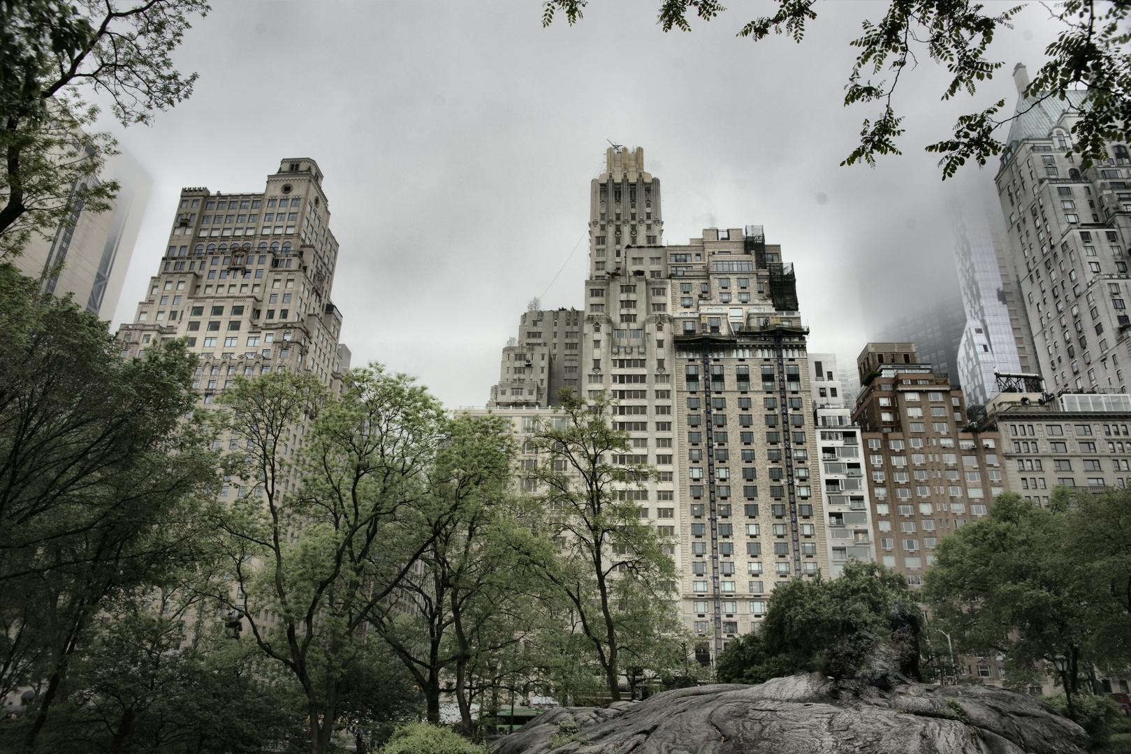 NY Central Park III