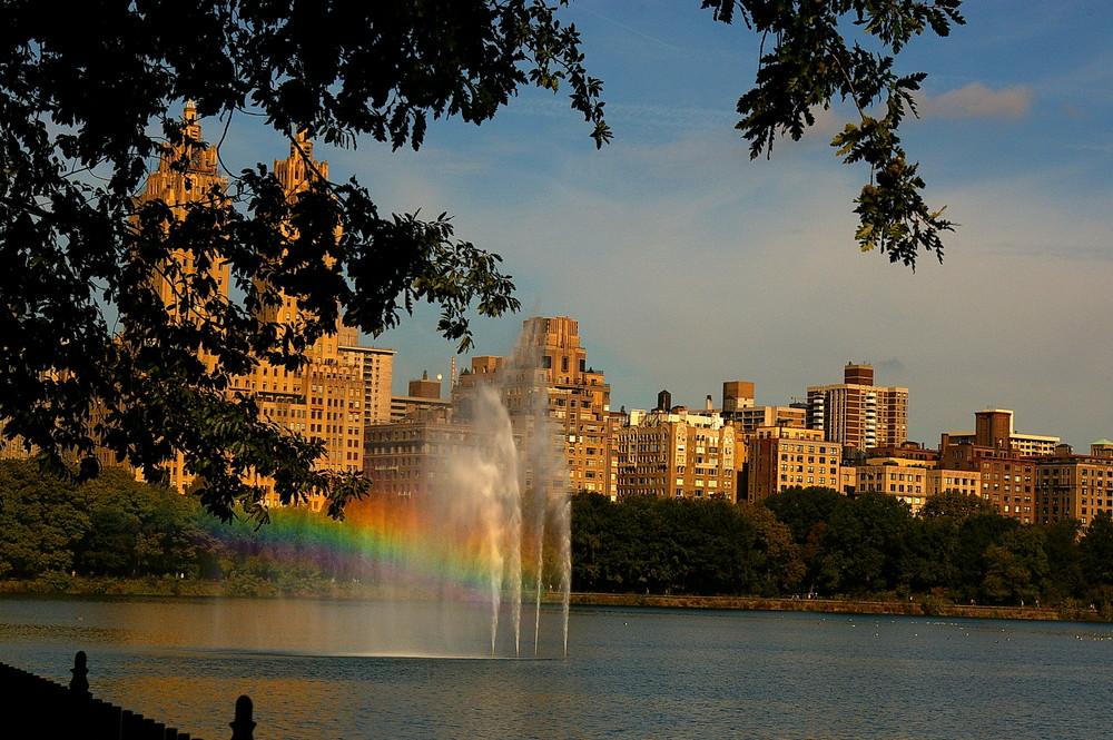 NY Regenbogen im Central Park