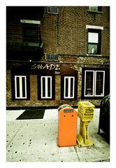 - - - NYC - - -
