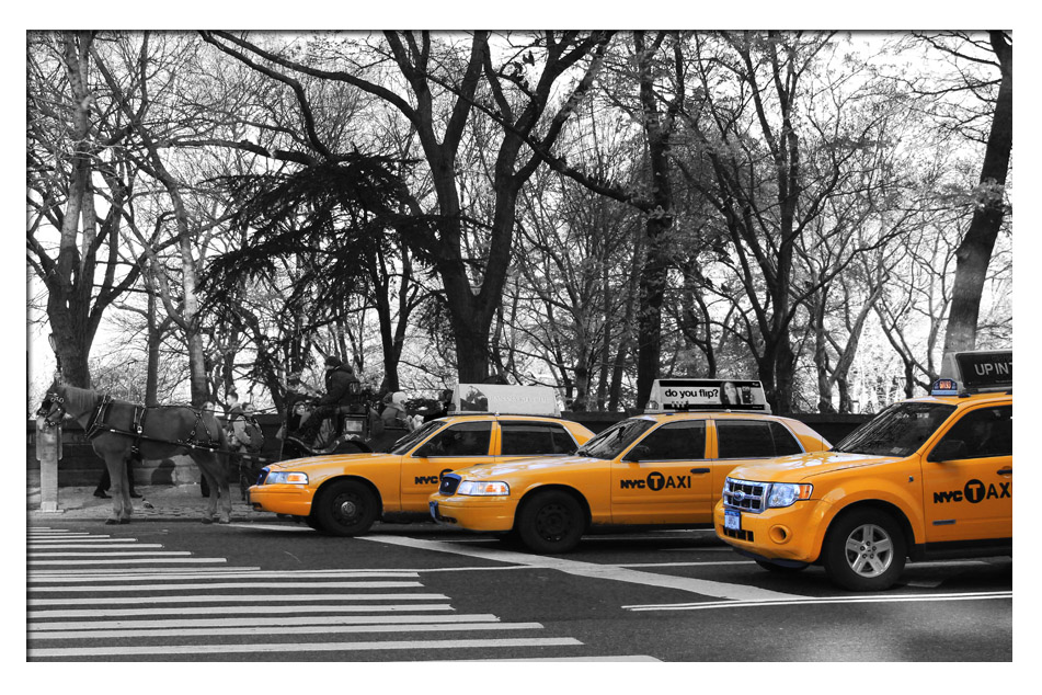 NYC -Central Park