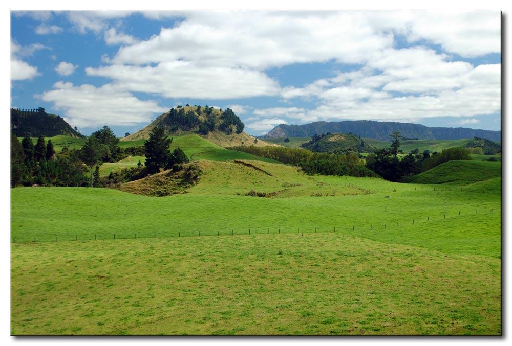 NZ mal ohne Schafe