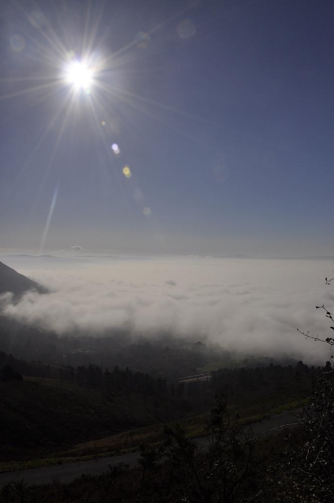 O sol sobre da néboa