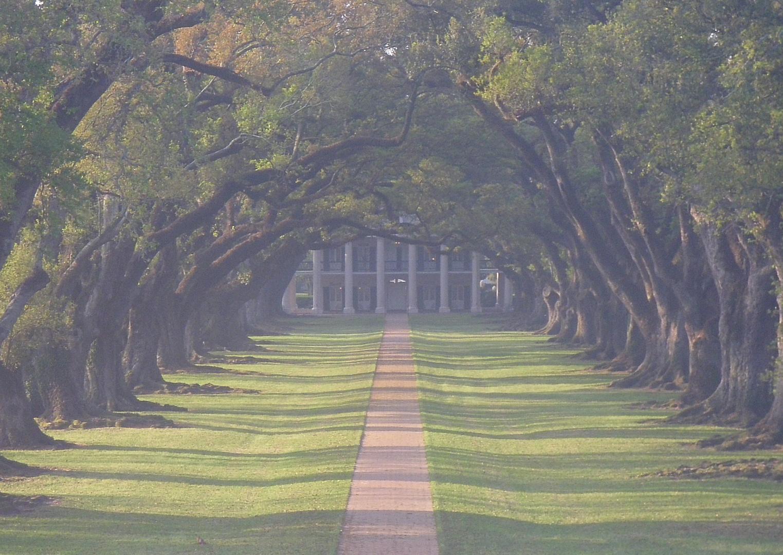 Oak Alley Plantation im Morgendunst