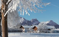 oan g'scheiten Winter