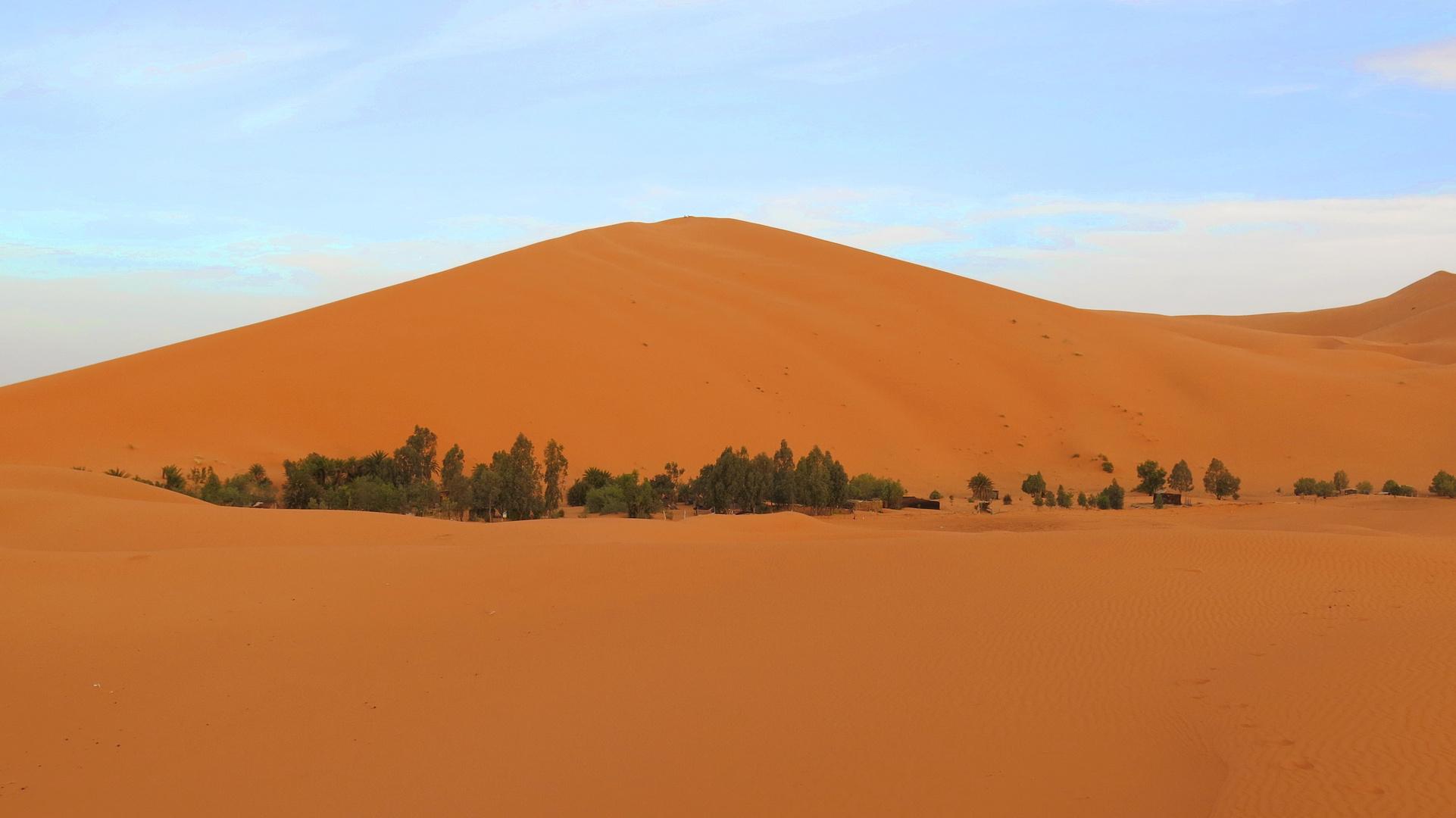 oasis al Sahara. Erg Chebbi