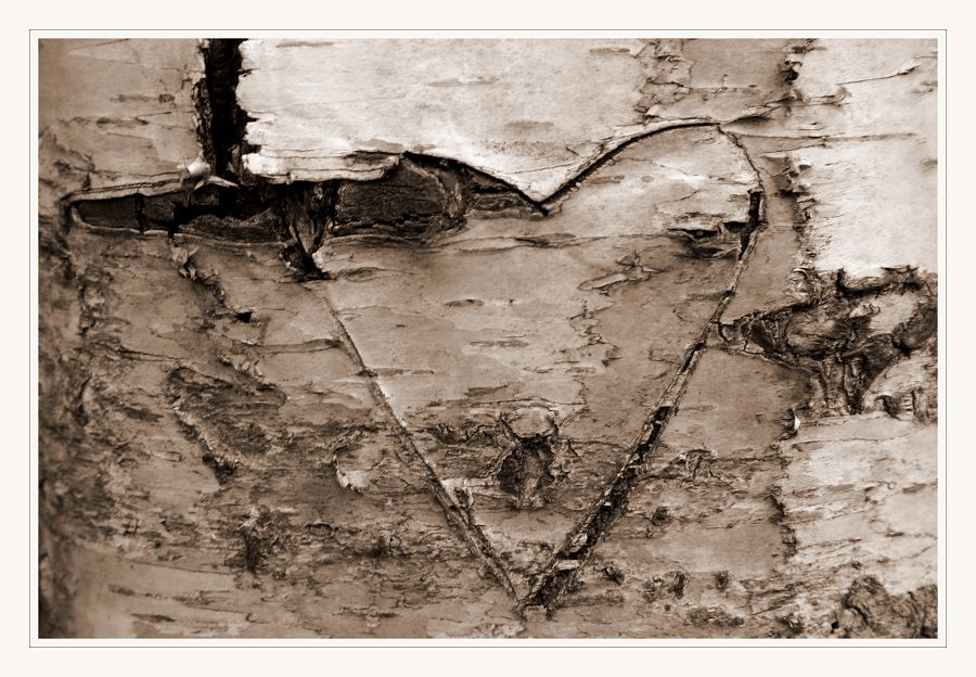 Ob die Liebe wohl genauso lang hält...