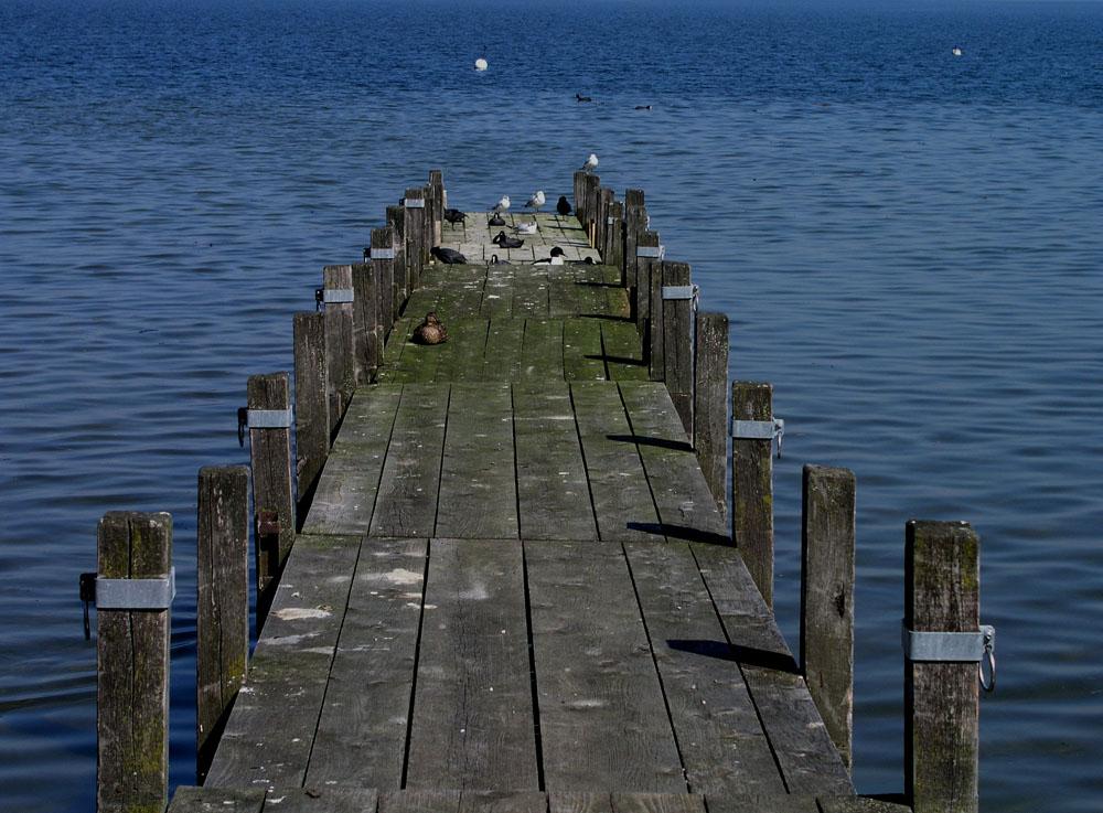 .......ob heute wohl noch ein Boot vorbei kommt?