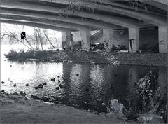 Obdachlose und Wasservögel ...