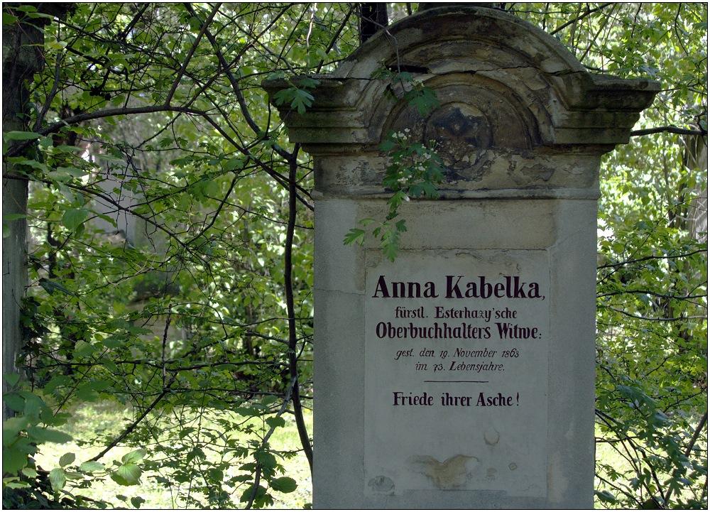 ... Oberbuchhalters Witwe ...