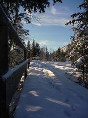 """Oberjoch auf 1200m 14 Through The Barricades"""