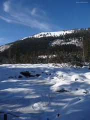 """""""Oberjoch auf 1200m 16 Winter"""""""