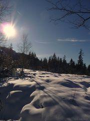 """""""Oberjoch auf 1200m 17 Winter"""""""