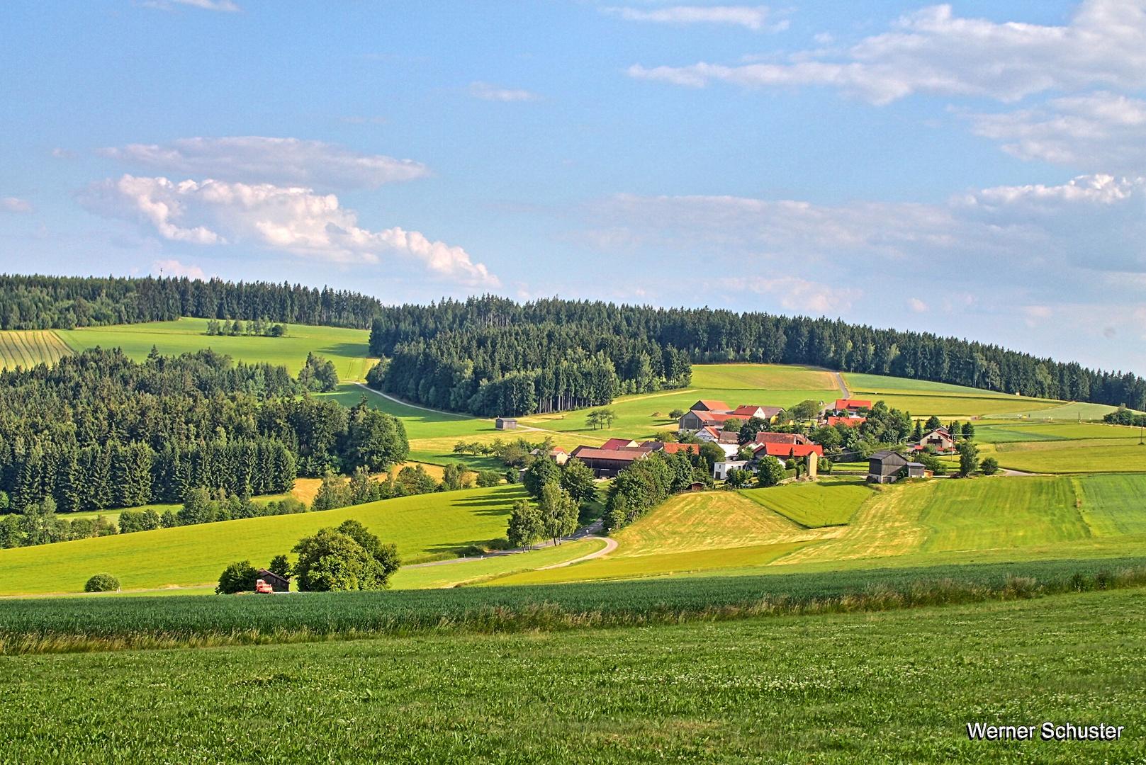 Oberpfälzer Wald und Wiesenland
